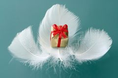 Small romantic  present on whi. Little present on white feathers Royalty Free Stock Photography