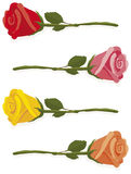 Small rose. Illustrated red, pink, yellow and orange roses laying on a white background Royalty Free Stock Image