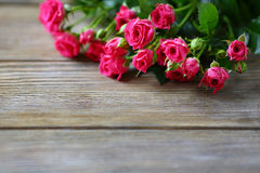 Small rose on the boards Royalty Free Stock Photos