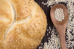 Small round sesame bread Royalty Free Stock Image