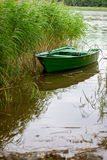 A small rowing boat in reed. Royalty Free Stock Image