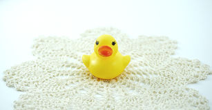 Small rubber duck on the lace Royalty Free Stock Photos