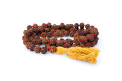 Small Rudraksh Mala Stock Photography