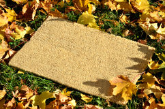 Small rug on grass surrounded by dry leaves Stock Photo