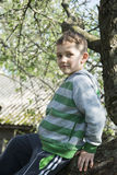 Small rural boy sitting on the tree. Stock Photos