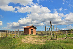 Rural house among vineyards. Piedmont, Italy. Stock Image