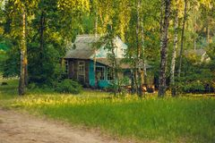 Small rural house in a forest Stock Photography