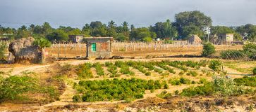 Small rural house and subsistence land. India Stock Photography