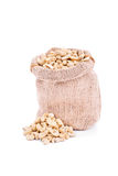 Small sack of fresh cashews Royalty Free Stock Images