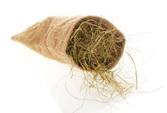 Small sack with the hay Royalty Free Stock Photo