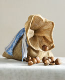 Small sack with hazelnuts Royalty Free Stock Images