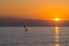 Small sailboat sailing in a yellow orange and purple sunset Stock Photos