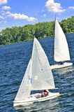 Small sailboats Royalty Free Stock Image