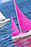Small sailboats Royalty Free Stock Photo