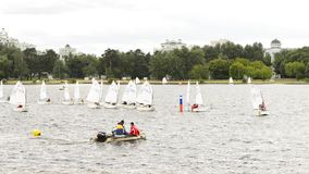 Small sailboats juniors training stock video