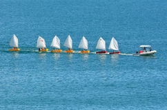 Small sailing boats Royalty Free Stock Photo