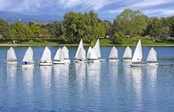 The small sailing ships regatta on the lake. The small sailing ships regatta on the blue lake stock images