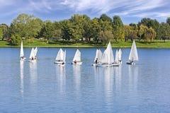 The small sailing ships regatta on the lake. The small sailing ships regatta on the blue lake stock photo