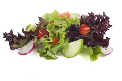 Small Salad Isolated Stock Image