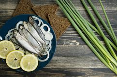 Small salted fish of Baltic herring, sprats on a wooden table. Top view royalty free stock photos