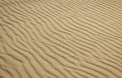Small sand dunes on the beach Stock Photos