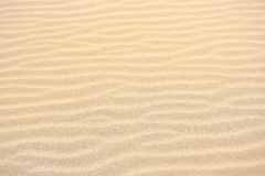Small sand dunes texture Royalty Free Stock Images