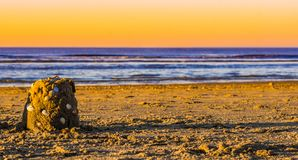Small sand castle decorated with seashells on the beach at sunset, beautiful blue ocean with a colorful sky stock photo