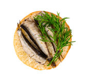 Small sandwich with sprats and dill Stock Image