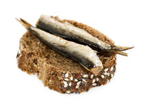 Small sandwich with sprats Royalty Free Stock Photography