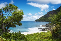 Small sandy beach between volcanic rocks Stock Photos