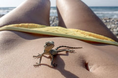 Small saurian on the human body - like a dinosaur  on the vacation at sea Royalty Free Stock Image