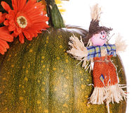 Small Scarecrow. A small scarecrow leaning against a ripening pumpkin, isolated against a white background Royalty Free Stock Images