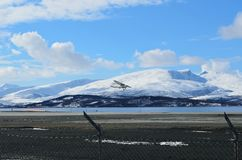 Small school plane attempts to land on Langnes airport. Norway stock photo
