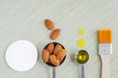 Small scoops with raw almonds, almond oil, cosmetic brush and cotton pad. Ingredients for preparing diy masks. Small scoops with raw almonds, almond oil stock image