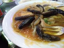 Sea cucumber dish. Small sea cucumbers as Chinese dish. Tastes like cartilage/gelatine royalty free stock image