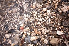 Small sea pebbles royalty free stock photography