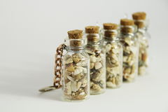 Small Seashells in a bottle. Photo of small seashells from Meditteranian Sea in a small glass bottle Royalty Free Stock Images