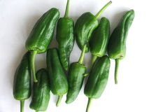 Small semi-spicy green peppers Stock Images
