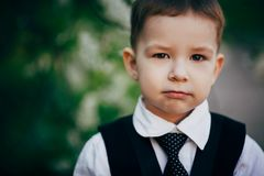 Small serious clever boy wear suit Royalty Free Stock Photo