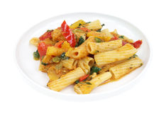 Small serving of rigatoni pasta with vegetables Stock Images