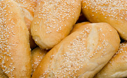 Small sesame breads Stock Images