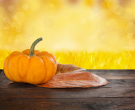 Small Shiny Pumpkin Royalty Free Stock Images