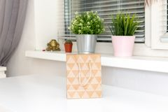Small shopping bag of craft paper on white table at home, green plants in flowerpots on a window sill behind royalty free stock photos