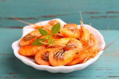 Small shrimp (crustaceans) in a blue background Stock Photos
