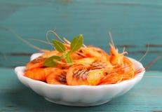 Small shrimp (crustaceans) Stock Images
