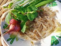 Small shrimp and thai herb stock images