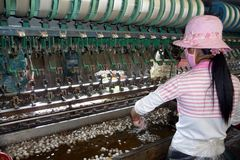Small silk factory in Vietnam. This photo shows a worker in a small silk factory in Southern Vietnam. Cocoons are heated up in hot water. The silk is then Royalty Free Stock Images