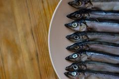 Small silver fish in a beige plate on a wooden table, close up stock image