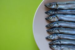 Small silver fish in a beige plate on a wooden table, close up royalty free stock photography