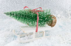 Small sleigh carrying a Christmas tree Stock Images